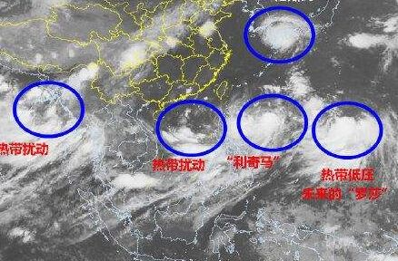 """""""利奇马""""台风会对氯化钙价格造成多大的影响?"""